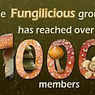 Fungilicious over 1000 members - banner 2 by steppeland