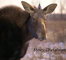 Mary Christmoose by Mike Oxley