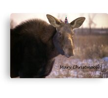 Mary Christmoose Canvas Print