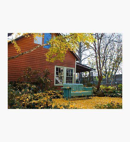 Cozy spot under the Gingko Tree Photographic Print