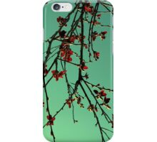 Oriental iPhone Case/Skin