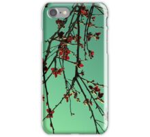 Orientique iPhone Case/Skin