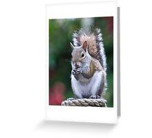Palm Beach Zoo, FL Greeting Card