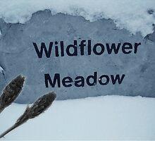 Wildflower Meadow!... by sendao