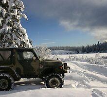 Need snow? by Levi Allan