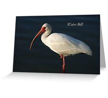 Water Bill Greeting Card