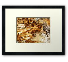 Decaying Log Framed Print
