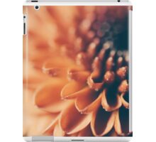 Sparkles iPad Case/Skin