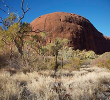 landscapes #157, valley floor at Kata Tjuta by stickelsimages