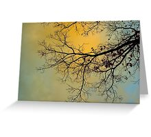 Early Morning Storm Greeting Card