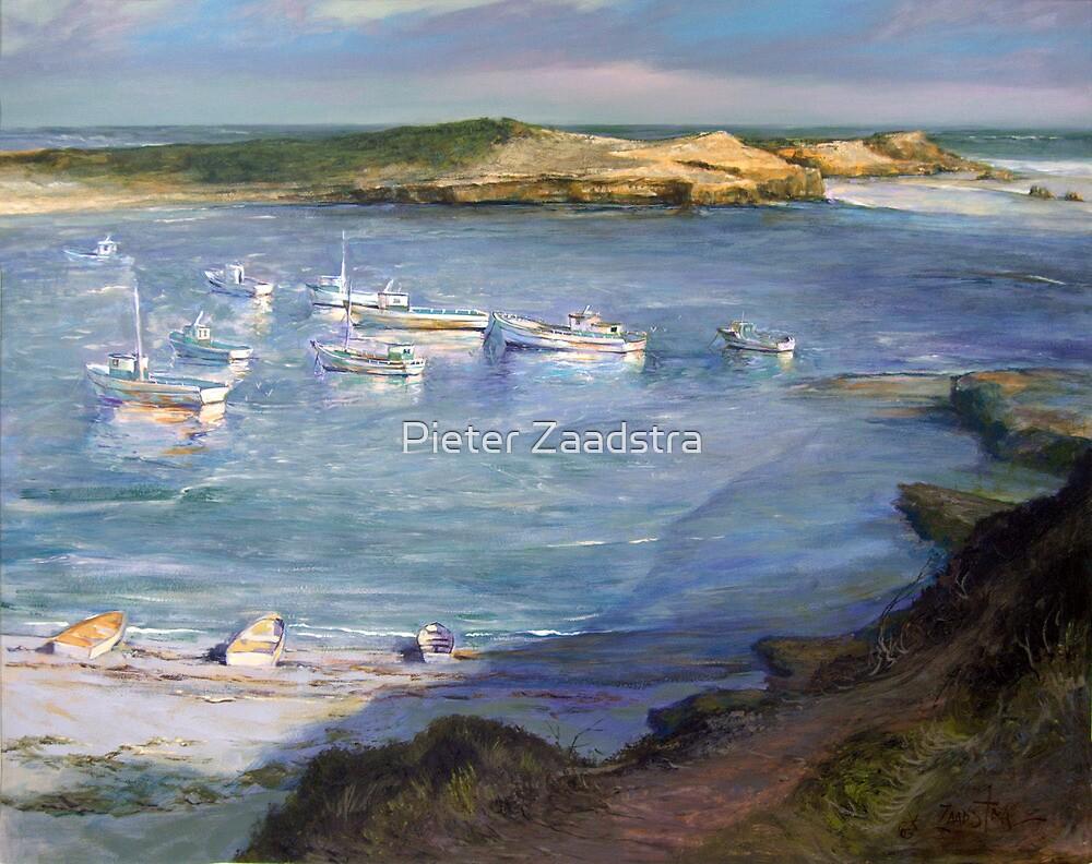Bucks Bay - Carpenter Rocks - South Australia by Pieter  Zaadstra