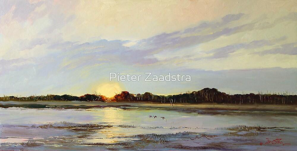 Teal Sunrise Swamp, Mingbool South Australia  by Tanya Zaadstra