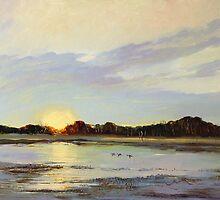 Teal Sunrise Swamp, Mingbool South Australia  by Pieter  Zaadstra