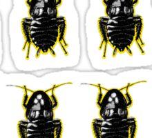 Blatella Orientalis, The Oriental Cockroach Tee Sticker