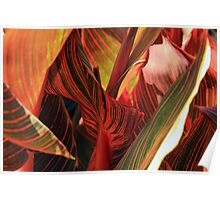 Textured Leaves Poster