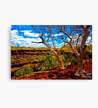 Dales Gorge Canvas Print