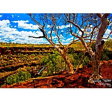 Dales Gorge Photographic Print