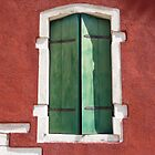 Green shutters by pljvv
