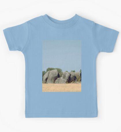 a desolate Tanzania landscape Kids Tee