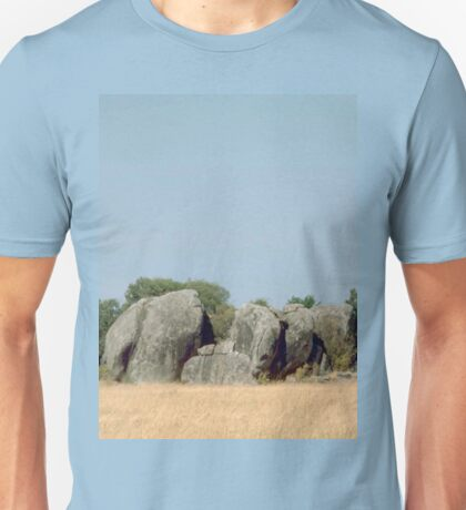 a desolate Tanzania landscape Unisex T-Shirt