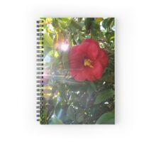 Redness Spiral Notebook