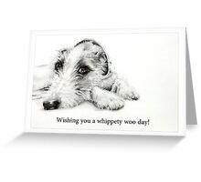 Whippety Woo! Greeting Card