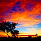 Karijini Sunrise by Sheldon Pettit