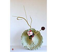 Ikebana-145 Photographic Print