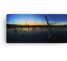 Beachmere swamp Canvas Print