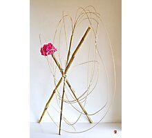 Ikebana-148 Photographic Print
