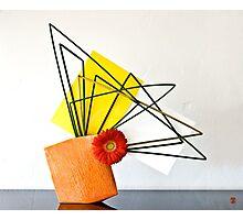 Ikebana-153 Photographic Print