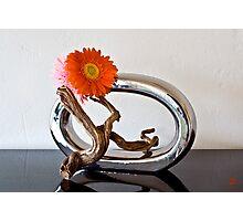 Ikebana-154 Photographic Print