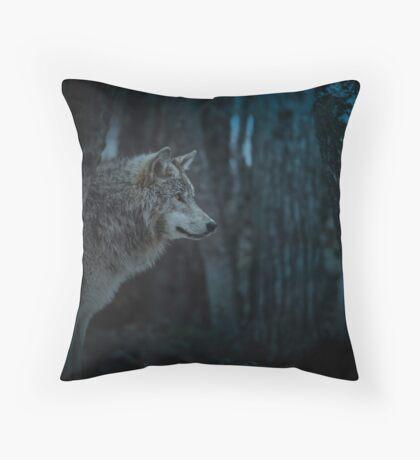 Night Visitor 3 - Psuedo Night Shot PS3 Throw Pillow