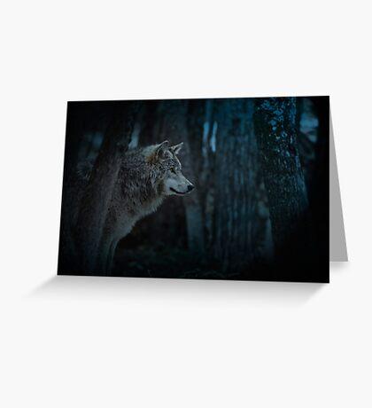 Night Visitor 3 - Psuedo Night Shot PS3 Greeting Card
