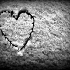 With Love... by A Different Eye Photography
