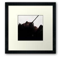 Whip Hand Framed Print