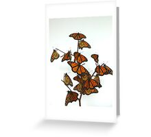 Full Monarch Butterfly Tree Greeting Card