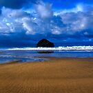 Gull Rock Trebarwith Strand by David Wilkins