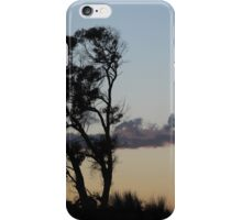 Dusk in the campo iPhone Case/Skin