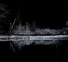 Snowy Night by love2shoot