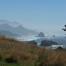 Ecola State Park Vistas, Oregon by Marita Sutherlin