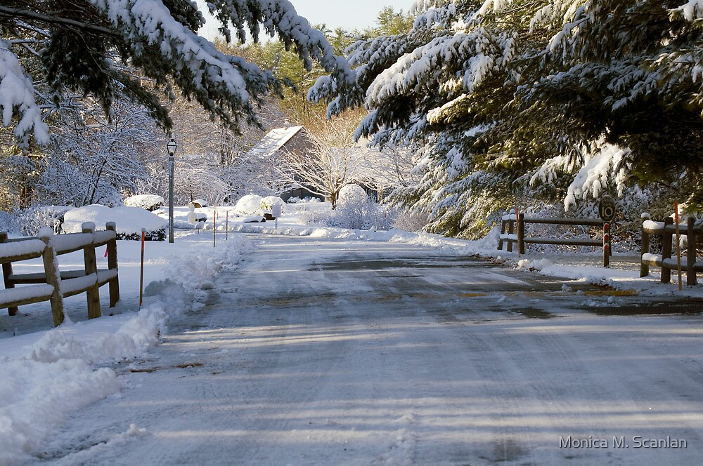 Early Morning Snow in Wells, Maine by Monica M. Scanlan