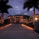CHRISTMAS IN FLORIDA 1 by MsLiz