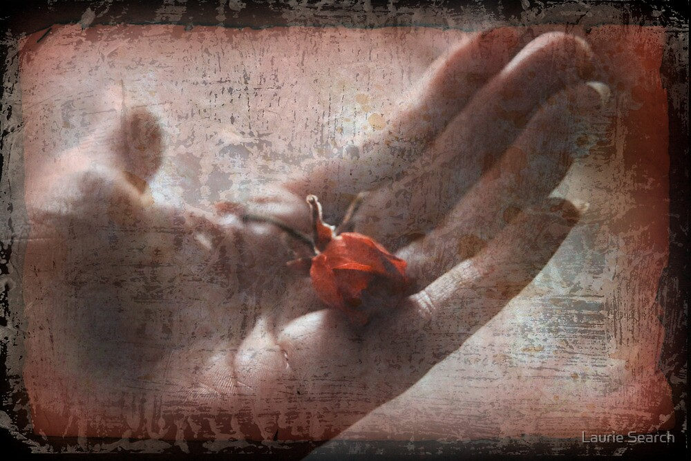 Would You Trust Me With Your Heart? by Laurie Search