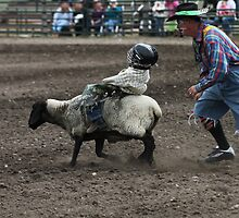 Cochrane Lions Rodeo #4, 2009, Canada. by Felicity McLeod