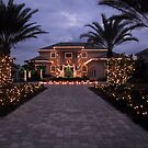 CHRISTMAS IN FLORIDA TOTALLY DECORATED by MsLiz