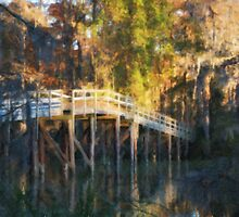 Turtle Bridge in Autumn by David Edwards