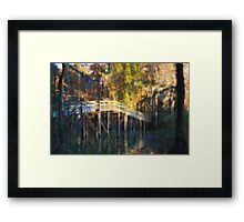 Turtle Bridge in Autumn Framed Print