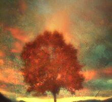 Tree on Fire (Textured) by Tara  Turner
