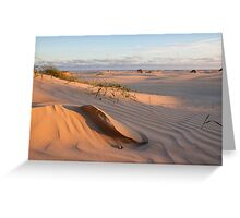 Sand sculpture Greeting Card